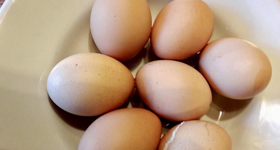 Uova, Egg